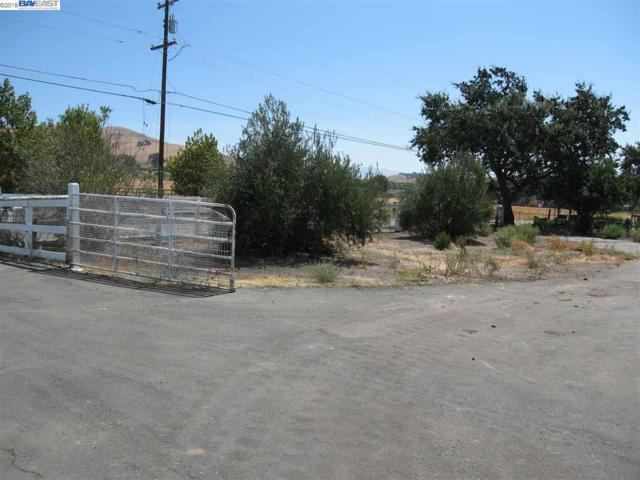 6443 Alisal St, Pleasanton, CA 94566 (#BE40836205) :: Strock Real Estate