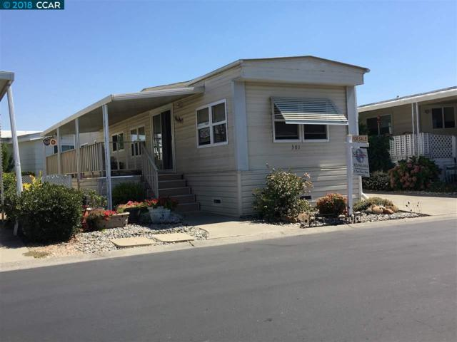 381 Avenida Flores, PACHECO, CA 94553 (#CC40836682) :: The Goss Real Estate Group, Keller Williams Bay Area Estates