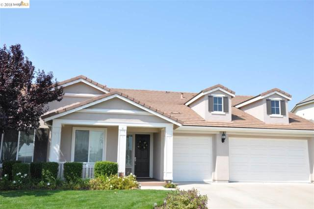 16 Privet Ct., Oakley, CA 94561 (#EB40836757) :: Julie Davis Sells Homes