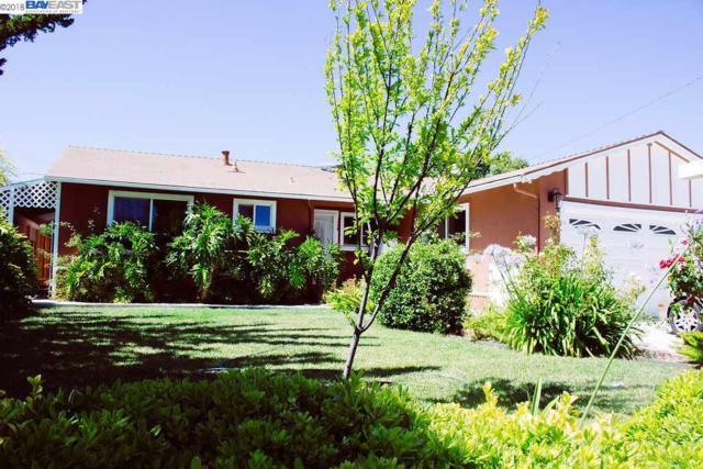 225 Camphor Ave, Fremont, CA 94539 (#BE40836969) :: The Kulda Real Estate Group