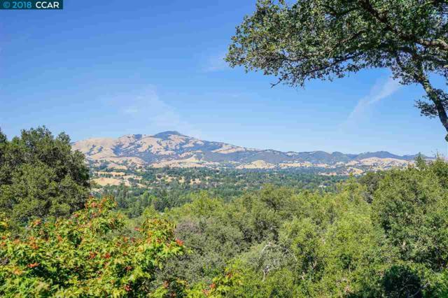 270 Kuss Rd, Danville, CA 94526 (#CC40837164) :: Perisson Real Estate, Inc.