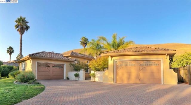 48060 Avalon Heights Ter, Fremont, CA 94539 (#BE40837170) :: Julie Davis Sells Homes