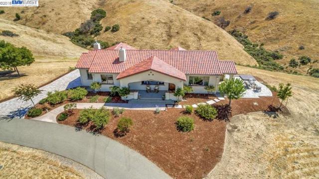 3522 Welch Creek Rd, Sunol, CA 94586 (#BE40837436) :: The Kulda Real Estate Group