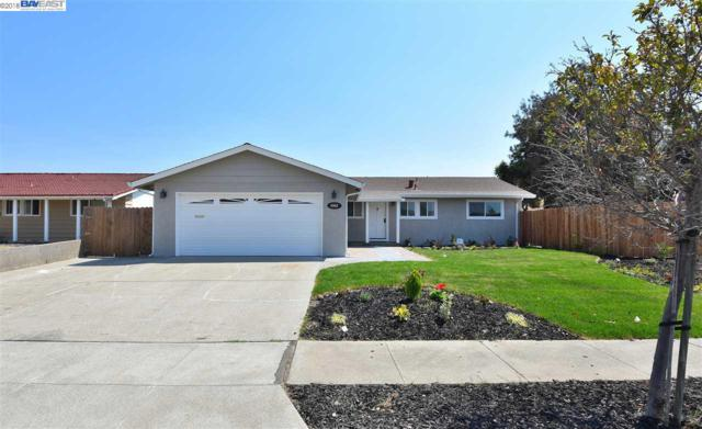 5862 Oleander Drive, Newark, CA 94560 (#BE40837446) :: The Kulda Real Estate Group
