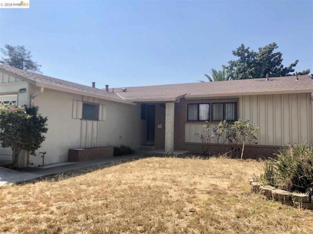 31001 Carroll Ave, Hayward, CA 94544 (#EB40837454) :: Strock Real Estate