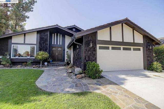 14 Viento Dr, Fremont, CA 94536 (#BE40837459) :: Julie Davis Sells Homes