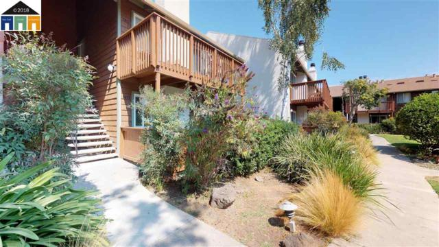 Pennsylvania Cmn, Fremont, CA 94536 (#MR40837583) :: Brett Jennings Real Estate Experts