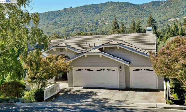 216 Meadowside Pl, Danville, CA 94526 (#BE40838069) :: Strock Real Estate