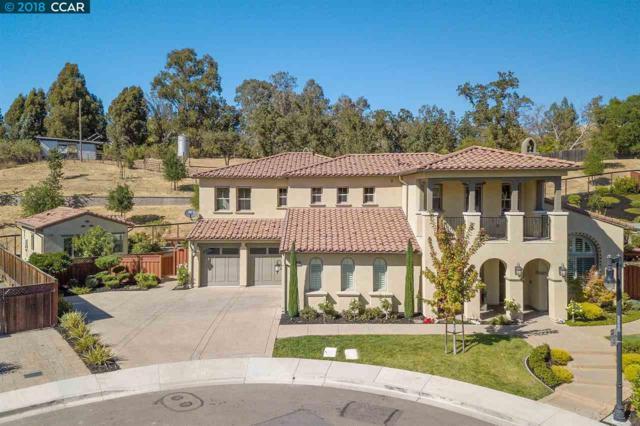 46 Weber Pl, Danville, CA 94526 (#CC40838229) :: Julie Davis Sells Homes
