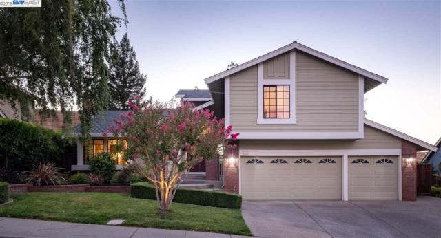 1121 Navalle Ct, Pleasanton, CA 94566 (#BE40838306) :: The Warfel Gardin Group