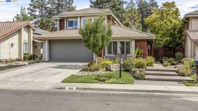 7313 Castle Dr, Dublin, CA 94568 (#BE40838341) :: Julie Davis Sells Homes