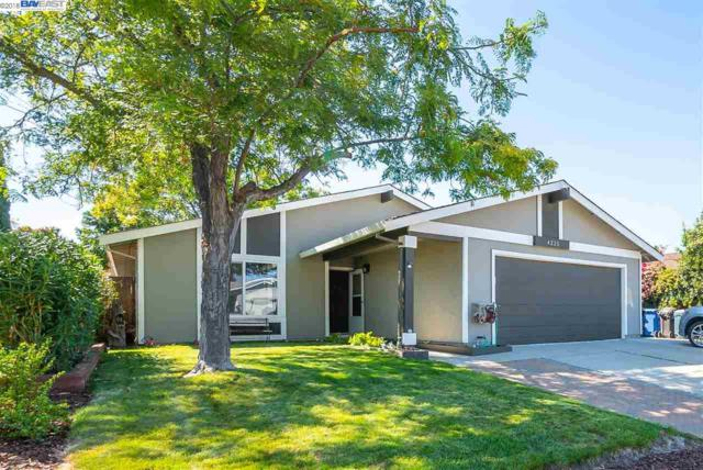 4225 Salgado Ave, Oakley, CA 94561 (#BE40838422) :: Julie Davis Sells Homes