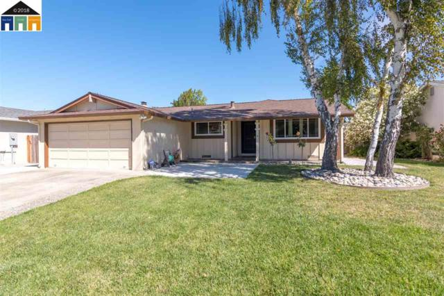 35004 Daisy, Union City, CA 94587 (#MR40838628) :: Strock Real Estate