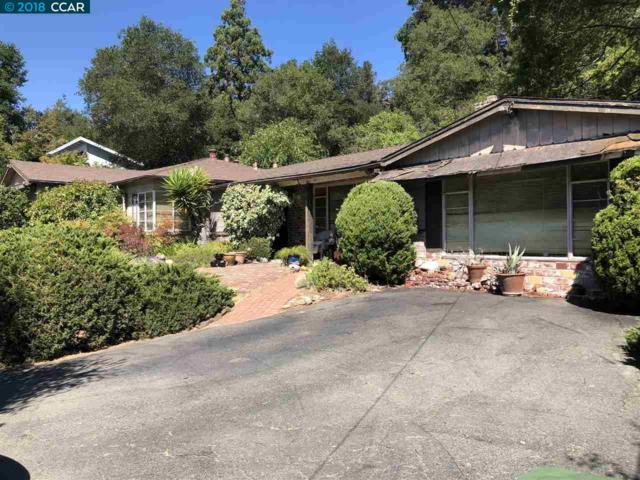 33 Van Ripper Ln, Orinda, CA 94563 (#CC40838855) :: Brett Jennings Real Estate Experts