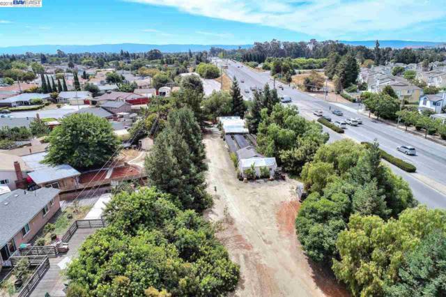 4440 Decoto Rd (Portion), Fremont, CA 94555 (#BE40838903) :: The Goss Real Estate Group, Keller Williams Bay Area Estates