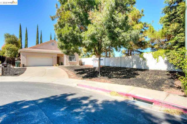 1917 Blue Mountain Ct, Antioch, CA 94531 (#EB40838999) :: Strock Real Estate