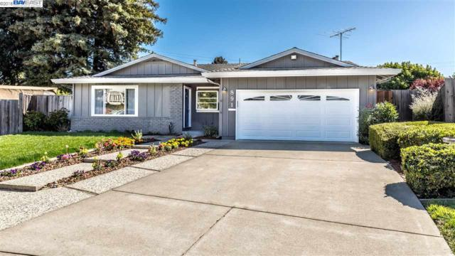 891 Poppy, Sunnyvale, CA 94086 (#BE40839277) :: The Kulda Real Estate Group