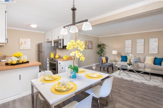 166 Shaniko Cmn, Fremont, CA 94539 (#BE40839418) :: The Kulda Real Estate Group