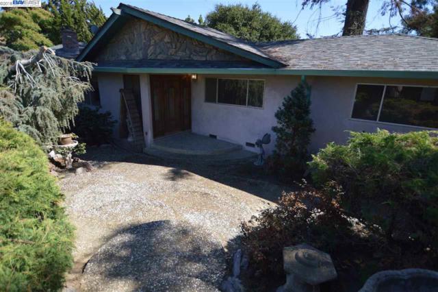 3907 Arbutus Ct, Hayward, CA 94542 (#BE40839450) :: Strock Real Estate