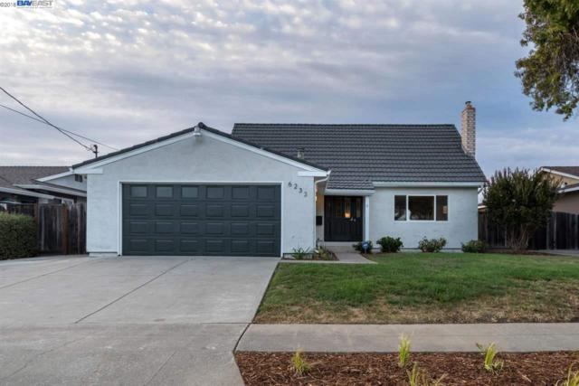 6233 Radcliff Avenue, Newark, CA 94560 (#BE40839516) :: The Gilmartin Group