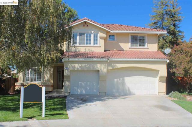 494 Pecan Pl, Brentwood, CA 94513 (#EB40839651) :: Strock Real Estate