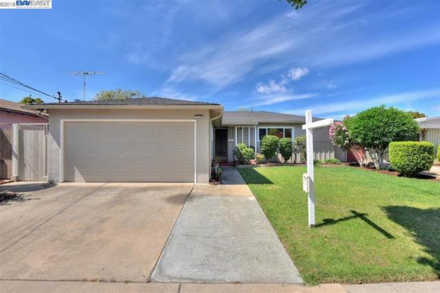 31105 Meadowbrook Ave, Hayward, CA 94544 (#BE40839693) :: Strock Real Estate