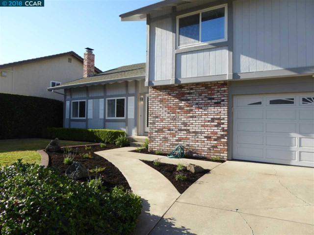 1883 Camino Estrada, Concord, CA 94521 (#CC40839763) :: Brett Jennings Real Estate Experts