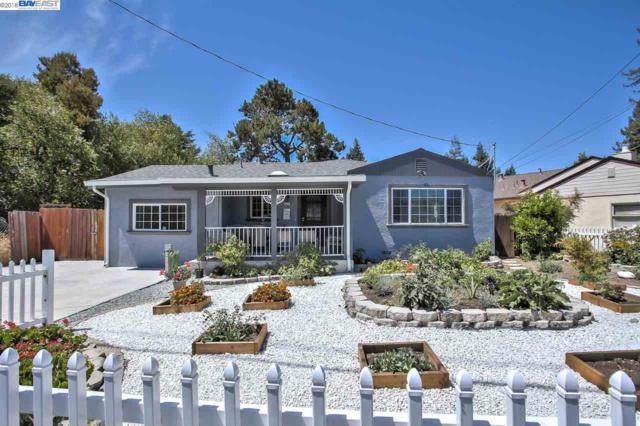 22251 N 4Th St, Castro Valley, CA 94546 (#BE40839869) :: Strock Real Estate