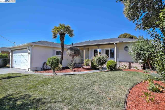 225 Newhall St, Hayward, CA 94544 (#BE40839934) :: The Kulda Real Estate Group