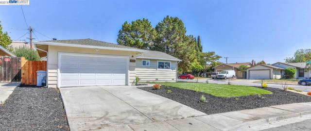 48398 Sawleaf St, Fremont, CA 94539 (#BE40840064) :: The Kulda Real Estate Group