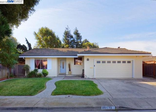 35173 Perry Rd, Union City, CA 94587 (#BE40840438) :: Strock Real Estate