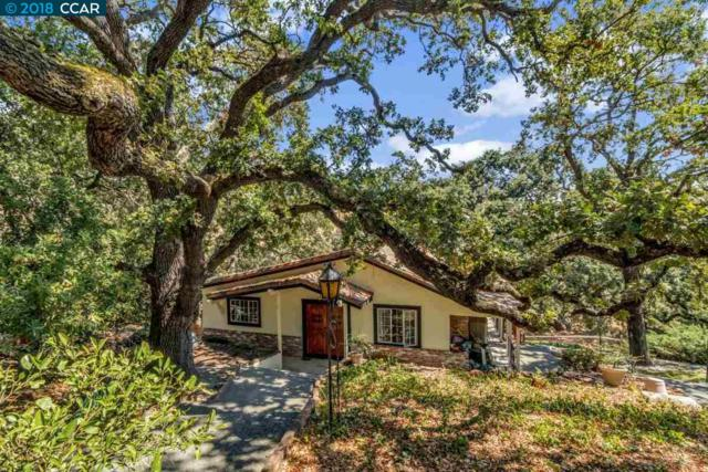3360 Johnson Rd, Lafayette, CA 94549 (#CC40840631) :: Julie Davis Sells Homes