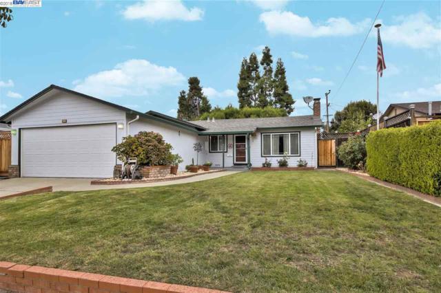 4633 Margery Dr, Fremont, CA 94538 (#BE40840648) :: Julie Davis Sells Homes