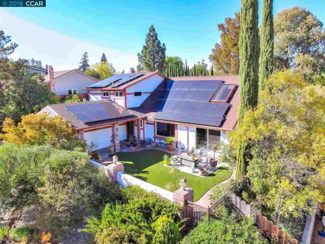 309 Mountaire Pkwy, Clayton, CA 94517 (#CC40840678) :: The Kulda Real Estate Group