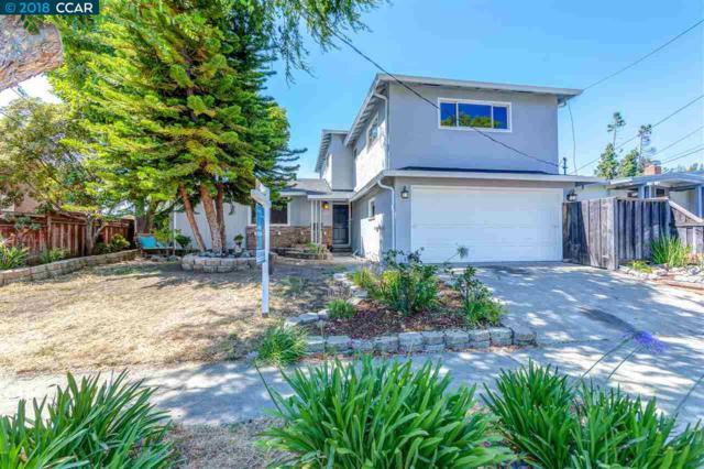 238 Fairway St, Hayward, CA 94544 (#CC40840713) :: The Kulda Real Estate Group