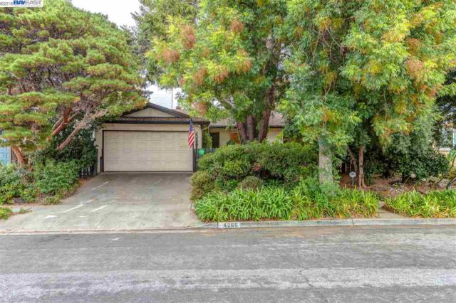 4266 La Cosa Ave, Fremont, CA 94536 (#BE40840851) :: The Warfel Gardin Group