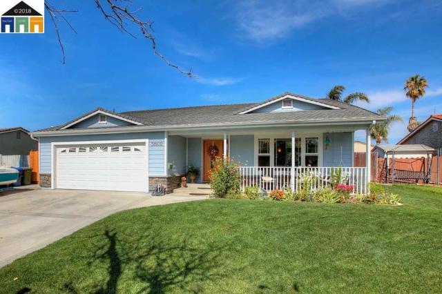 38102 Geranium St, Newark, CA 94560 (#MR40841031) :: The Kulda Real Estate Group