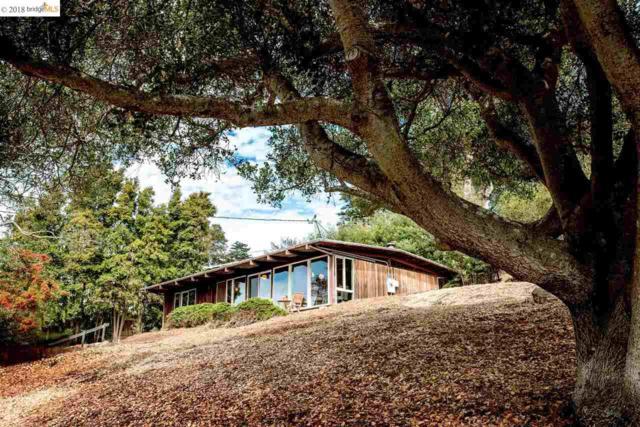 970 Contra Costa Dr, El Cerrito, CA 94530 (#EB40841034) :: The Kulda Real Estate Group