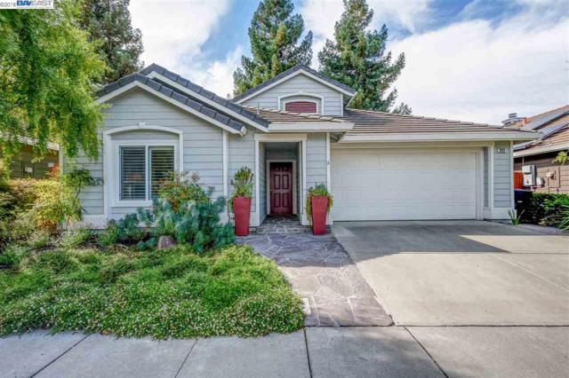 222 Trenton Cir, Pleasanton, CA 94566 (#BE40841130) :: The Goss Real Estate Group, Keller Williams Bay Area Estates