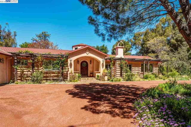 6154 Mines Rd, Livermore, CA 94550 (#BE40841257) :: Julie Davis Sells Homes