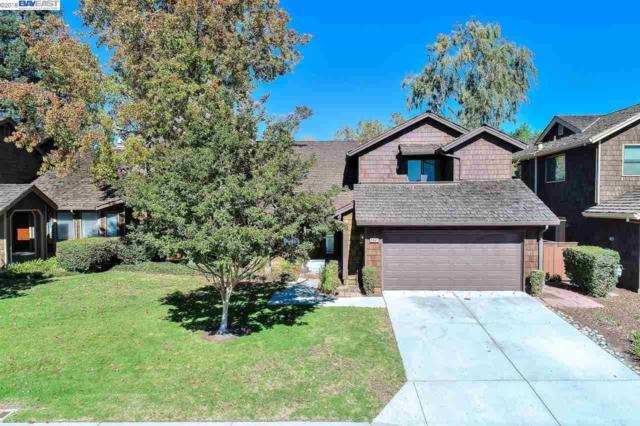 2041 Ocaso Camino, Fremont, CA 94539 (#BE40841921) :: The Goss Real Estate Group, Keller Williams Bay Area Estates