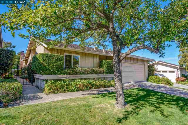 1965 E Rancho Verde Cir, Danville, CA 94526 (#CC40841951) :: The Goss Real Estate Group, Keller Williams Bay Area Estates