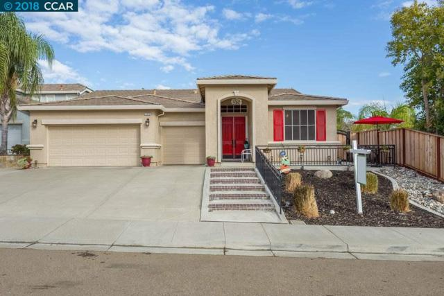 1874 Foster Mountain Ct, Antioch, CA 94531 (#CC40842032) :: Julie Davis Sells Homes