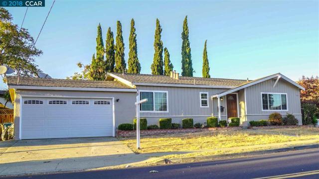 667 Tamarack Dr, Union City, CA 94587 (#CC40842179) :: Perisson Real Estate, Inc.