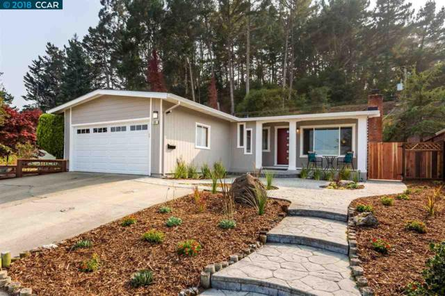 Fernwood Dr, San Bruno, CA 94066 (#CC40842225) :: The Goss Real Estate Group, Keller Williams Bay Area Estates