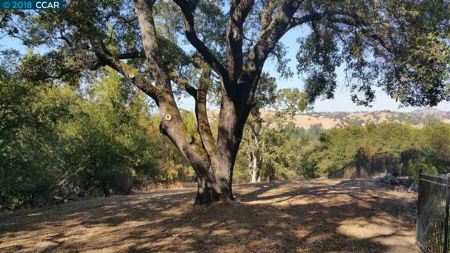 Kuss Road, Danville, CA 94526 (#CC40842829) :: Strock Real Estate
