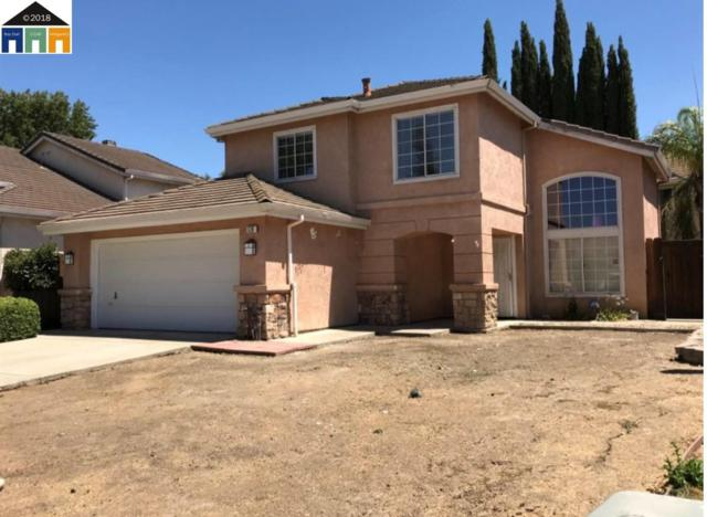 520 Wagtail Dr, Tracy, CA 95376 (#MR40842912) :: The Goss Real Estate Group, Keller Williams Bay Area Estates