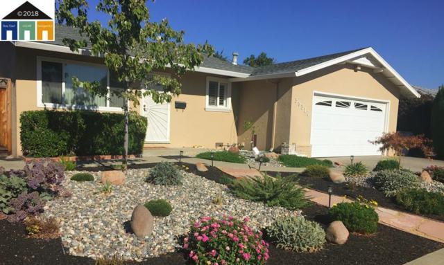 39316 Wilford St, Fremont, CA 94538 (#MR40843007) :: The Kulda Real Estate Group