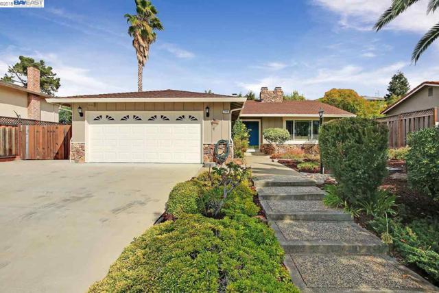 792 Ulmeca Pl, Fremont, CA 94539 (#BE40843011) :: The Kulda Real Estate Group