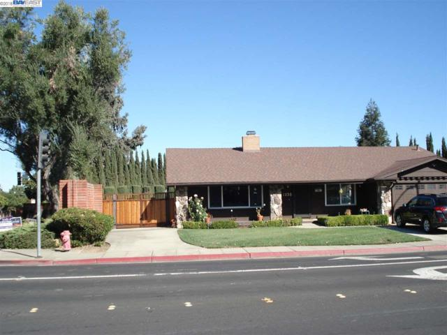 1230 Vancouver Way, Livermore, CA 94550 (#BE40843084) :: Julie Davis Sells Homes